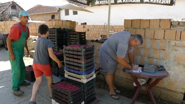 Malinari očekuju da se uredi tržište srpskog