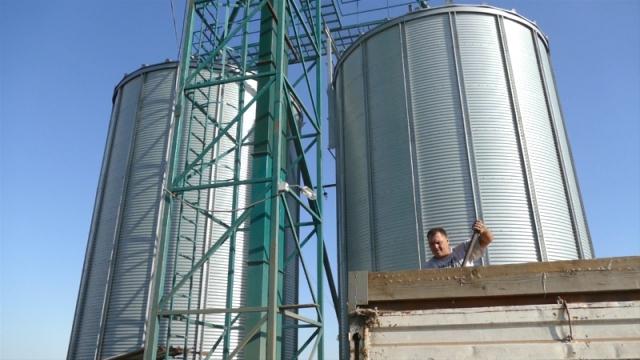 Žito donosi prvi prihod u ekonomskoj godini