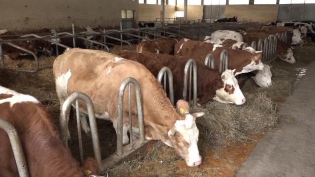 Povoljni uslovi za organsku poljoprivredu