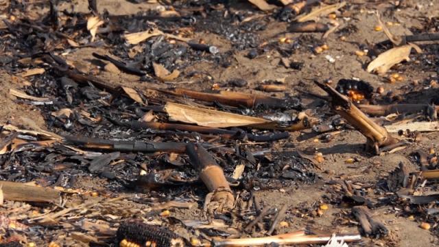 Poljski i šumski požari najopasniji