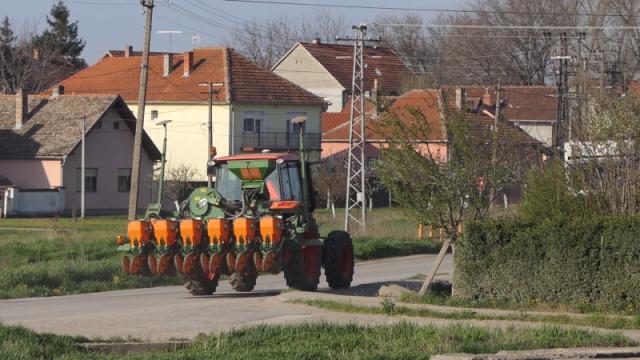 Zastao promet pšenice