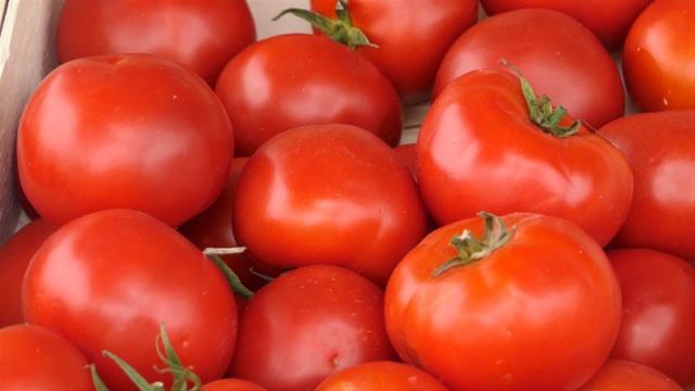 Visoke cene posledica znatno manjeg roda povrća