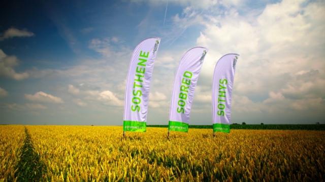 Agromarket preporučuje sorte novije generacije