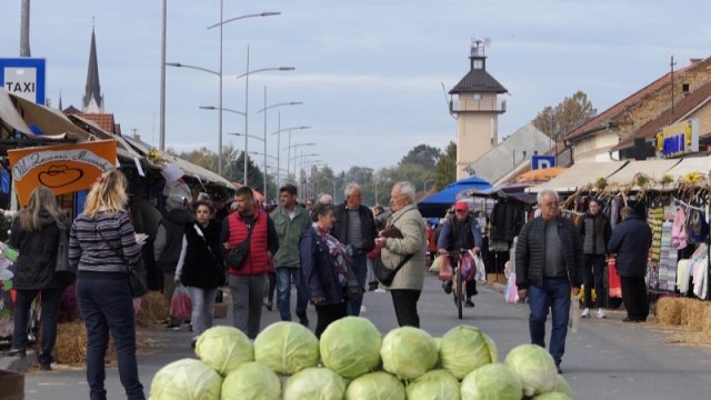 """""""Futoški kupus - brend Srbije"""""""