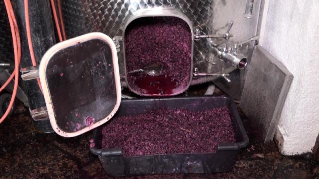 Domaća vina čine 70% srpskog tržišta