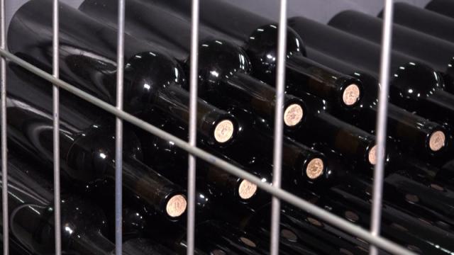U Srbiji dva i po puta više vinarija nego pre deset godina