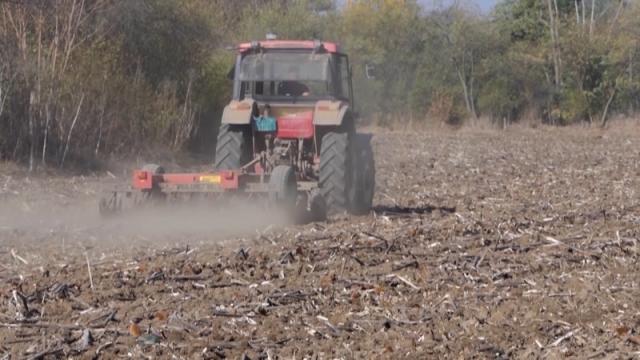 Za hektar svega 13 dinara godišnje