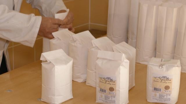 Hleb, banicu, propeć i zeljanče, prave od speltinog brašna