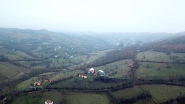 U Kolubarskom okrugu 8,4 milliona više nego prethodne godine