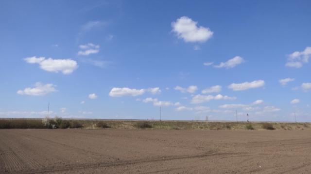 Novi život za 2.400 hektara