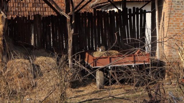 U selu Kusadak razvijen društveni aktivizam