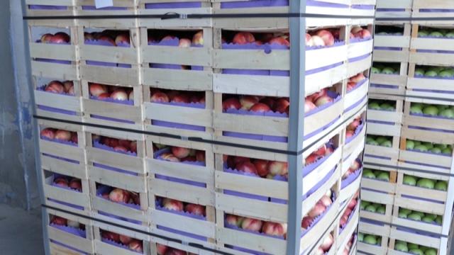 Zabrana uvoza voća koje sadrži tragove hlorpirifosa