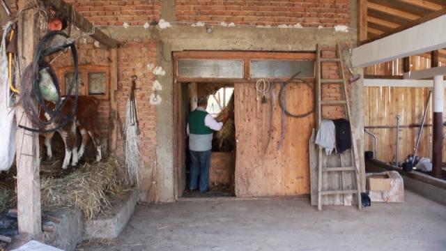 Opština Gornji Milanovac podržava sve oblasti poljoprivrede