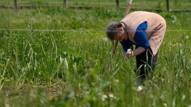 Preporuke stručnjaka itekako značajne za poljoprivrednike