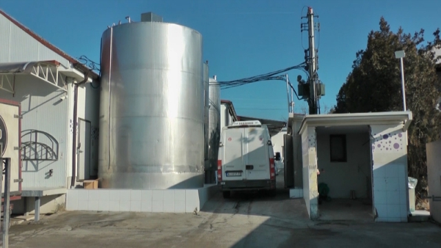 Radi se u tri smene i dnevno preradi 150 tona mleka