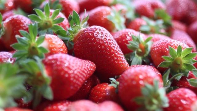 Proizvođači ranih jagoda imaju problem sa plasmanom
