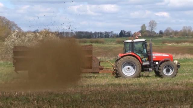 Zelenišno djubrenje, za bolji kvalitet zemljišta