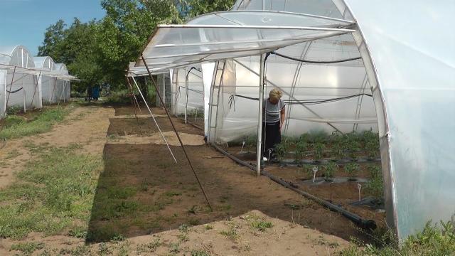 Zanimanje budućnosti - poljoprivrednik