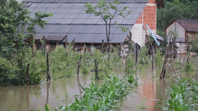 Poplave uticale na smanjenje prinosa