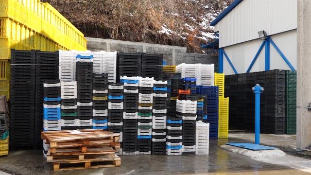 Skromni skladišni i preradni kapaciteti utiču na otkup