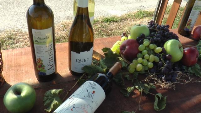 Banoštorci poznati po proizvodnji vina