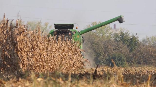 Soja i kukuruz će koštati više nego lane
