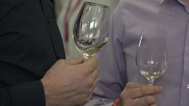 Promocija domaćih vina na Palilulskoj pijaci