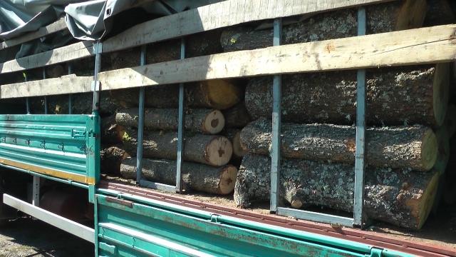 Drvo najjeftiniji energent