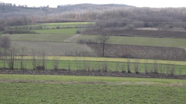 Zemljište se može koristiti isključivo za agrarnu proizvodnju