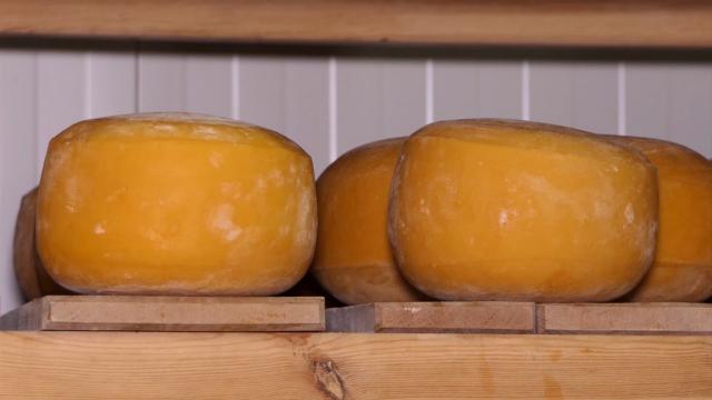 Proizvodnju sira zasnivaju na stogodišnjoj tradiciji
