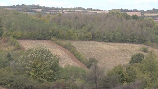 Građanima Vojvodine pripala gotovo polovina vraćenog zemljišta