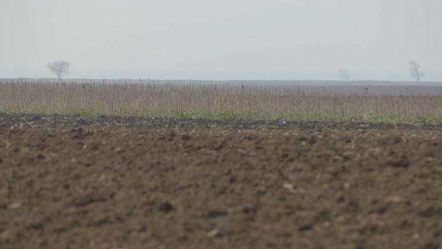 Sredstava za uređenje i korišćenje poljoprivrednog zemljišta