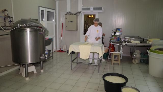 """""""Trenutno stanje u proizvodnji sira i mogućnost plasmana"""""""