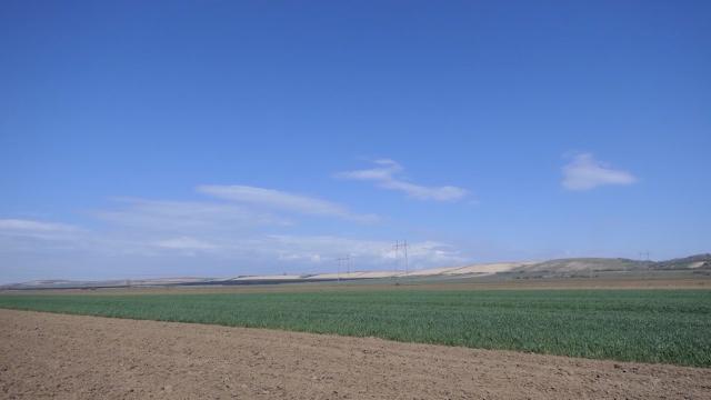 Naslednicima vraćeno oko 80% poljoprivrednog zemljišta