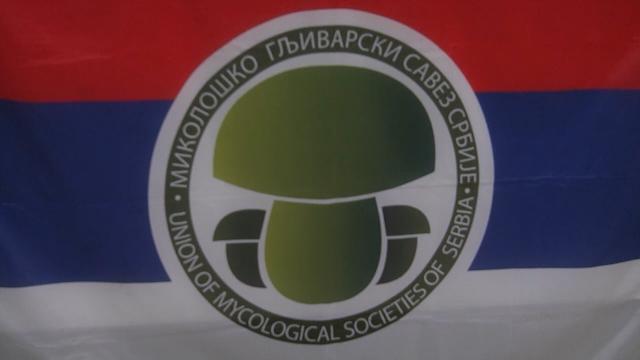 Polaganje za zvanje tartufar u Sremskoj Mitrovici