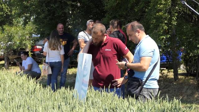 Dan polja ozimih strnih žita bio prilika i za susret i razmenu proizvodnih  iskustava