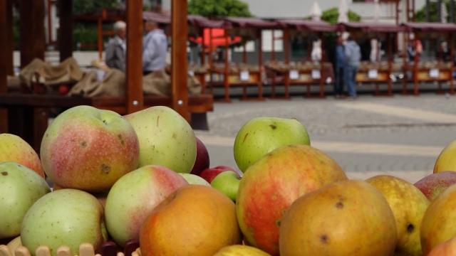 Dok stigne do kupca, voće poskupi nekoliko puta