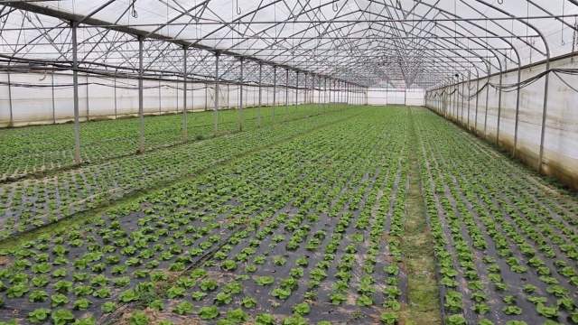 Ministar pozvao poljoprivrednike da više koriste državne mere