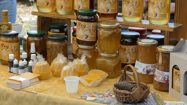 Za pčelare SPOS-a učešće je potpuno besplatno